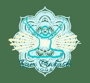 Ram Prakash Yoga Logo