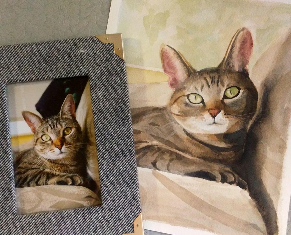 Pet Portraits, Cat Portraits, Dog Portraits Austin