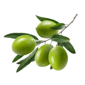 jolpai (olives) 500gm
