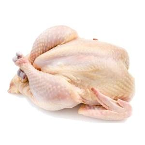 cock chicken skin in