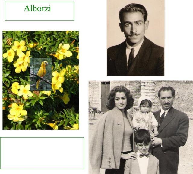 Alborzi1