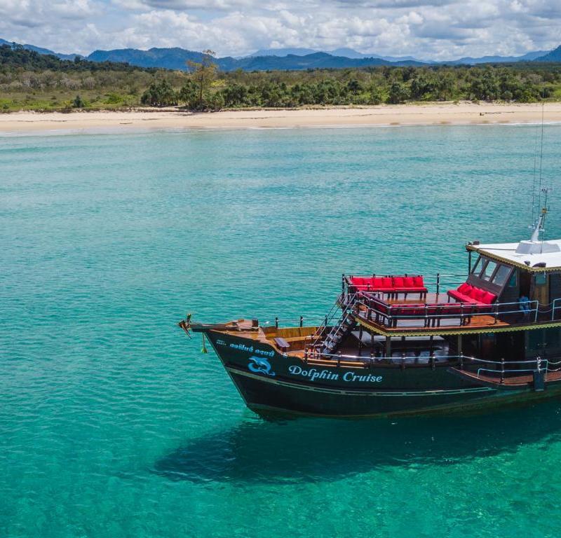 khao-lak-ausflüge-dolphin-cruise