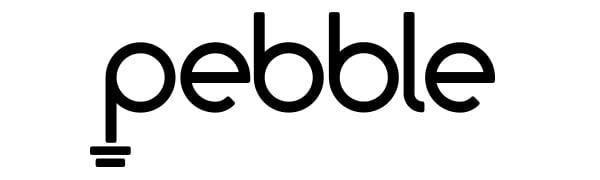 Pebble DUO