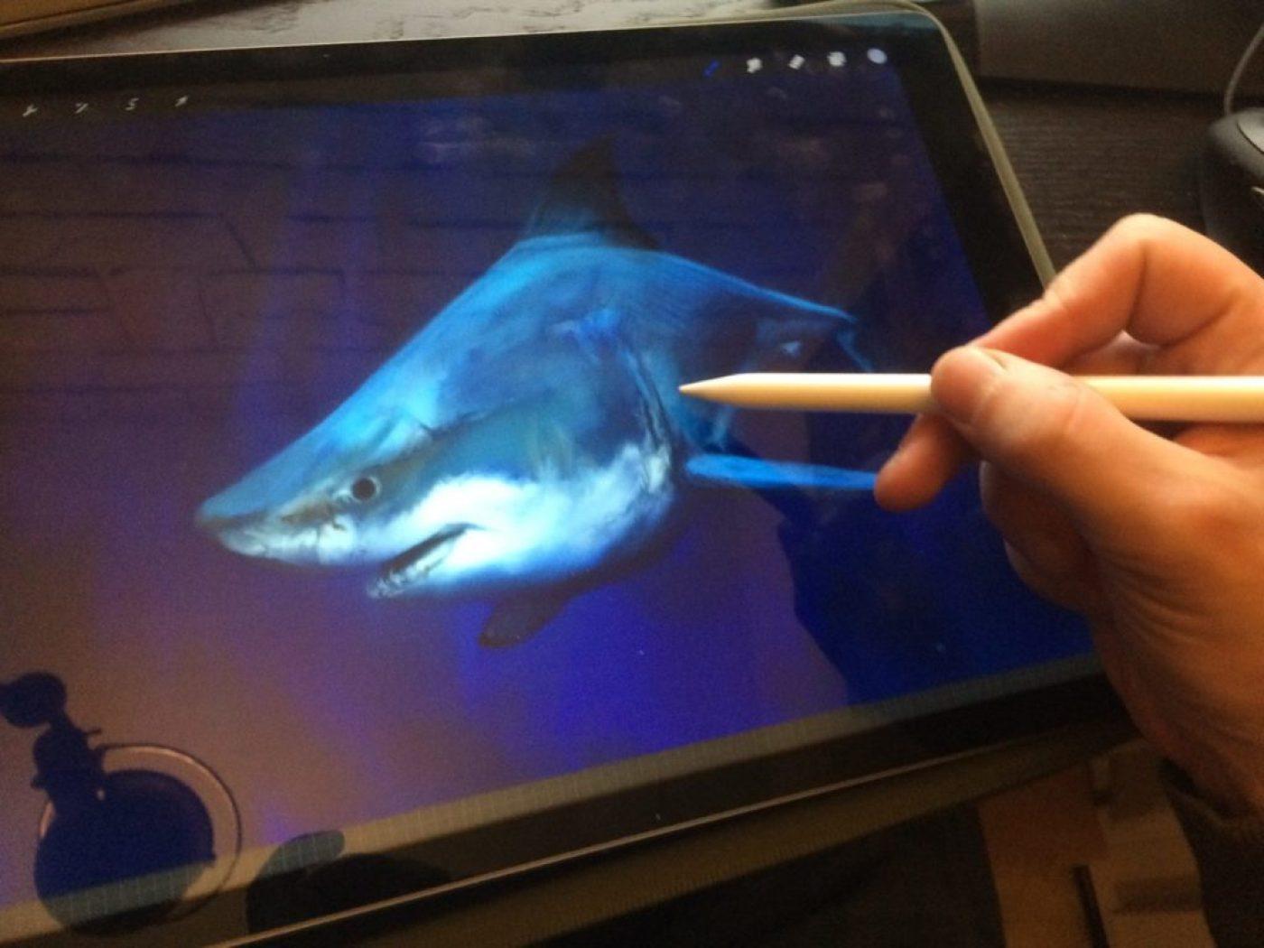 12-requin-ipad-mko