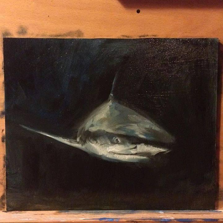 12ba-shark