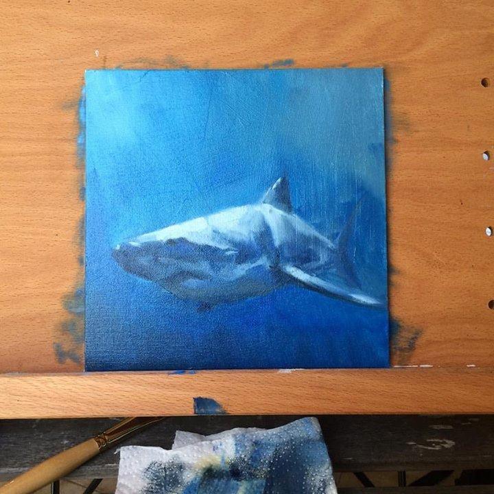 12bb-shark