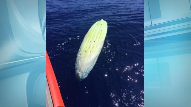 coast guard abandoned kayak_76419