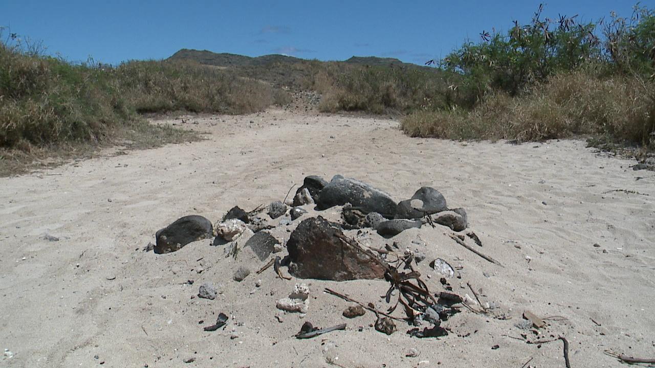 beach bonfire aftermath_83699