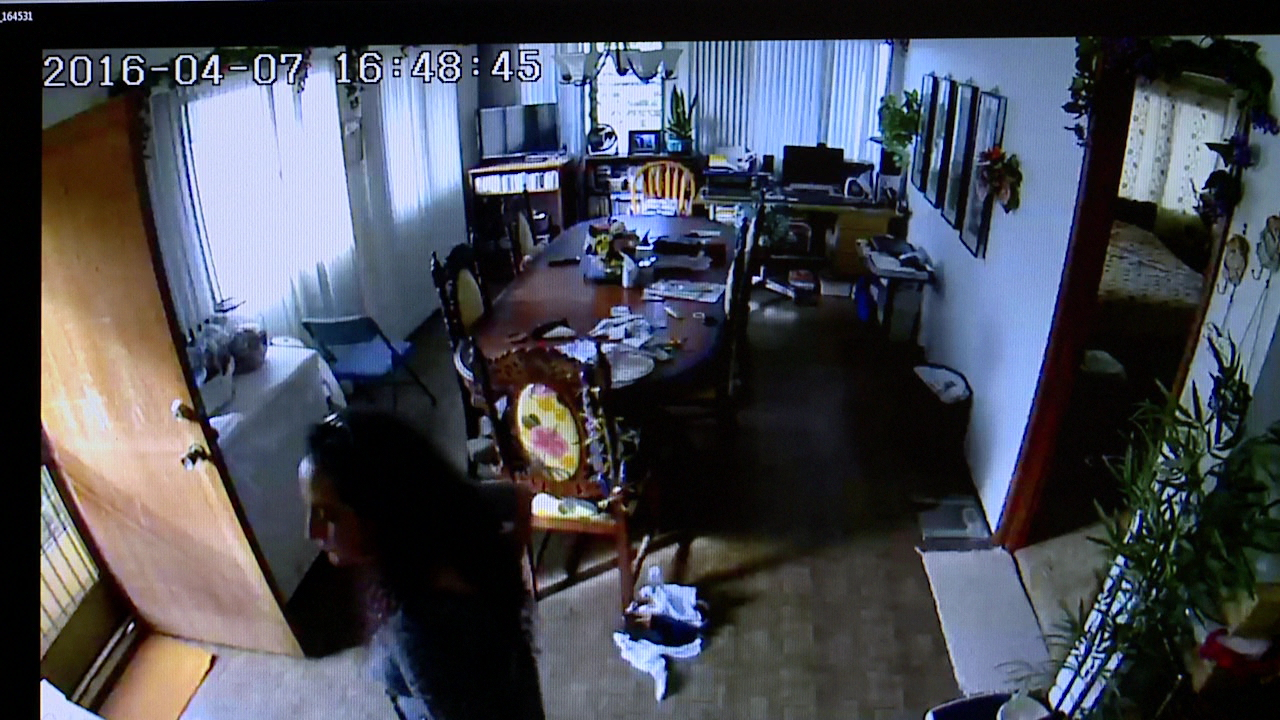 mililani surveillance video_153277