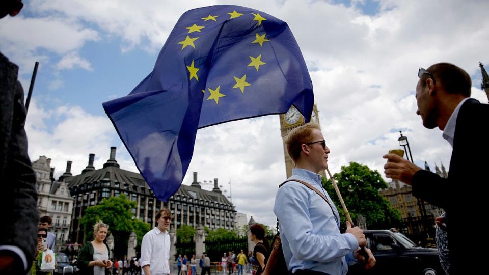 brexit EU supporter_163599