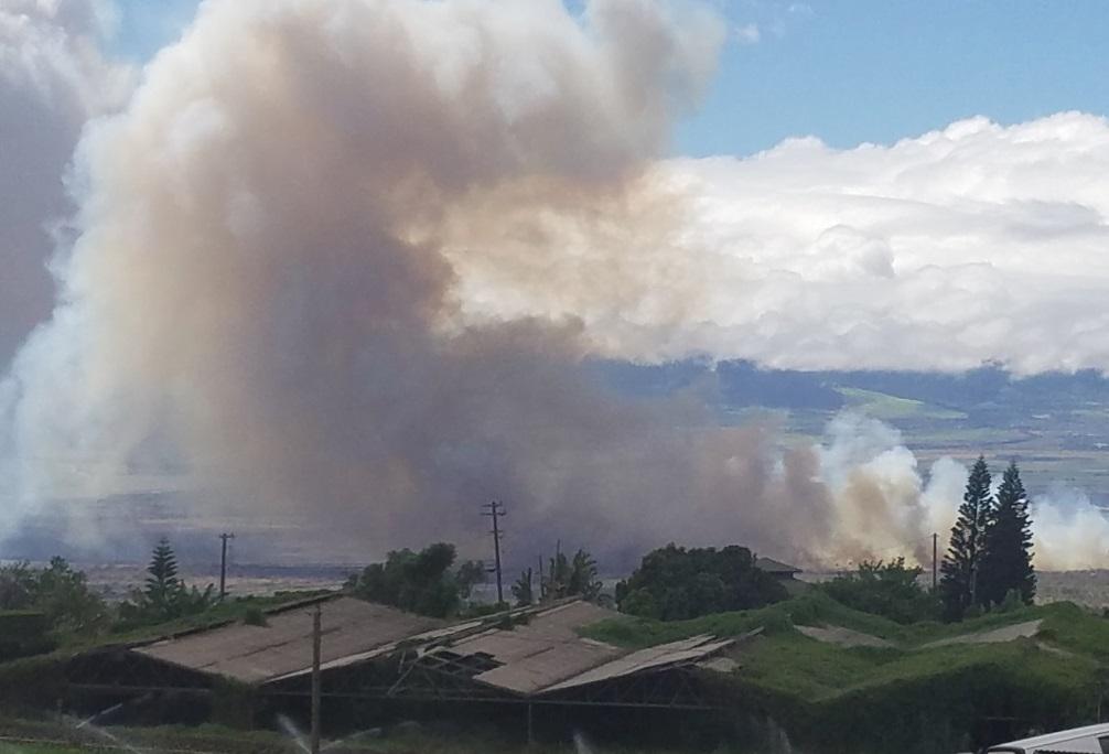 maui brush fire august 20-1_171413
