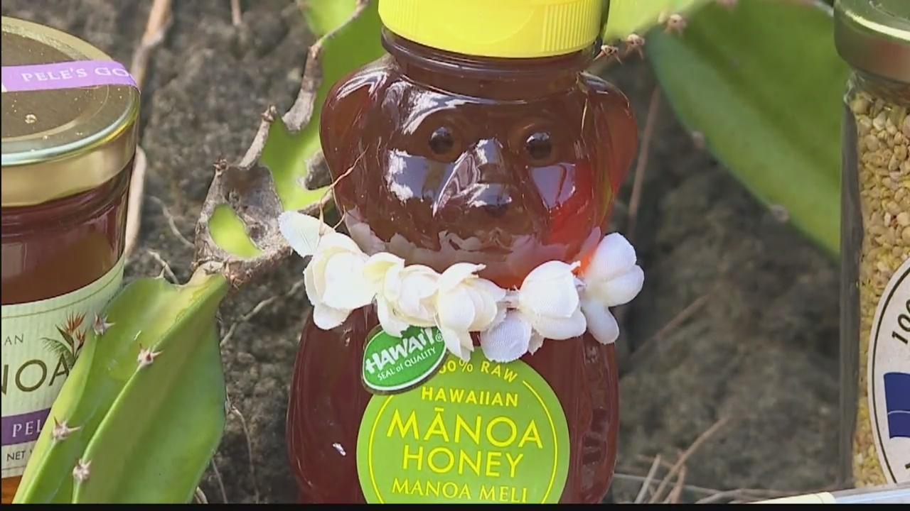 Hawaii_Grown_____Hawaii_Made__Manoa_Hone_0_20180324041540