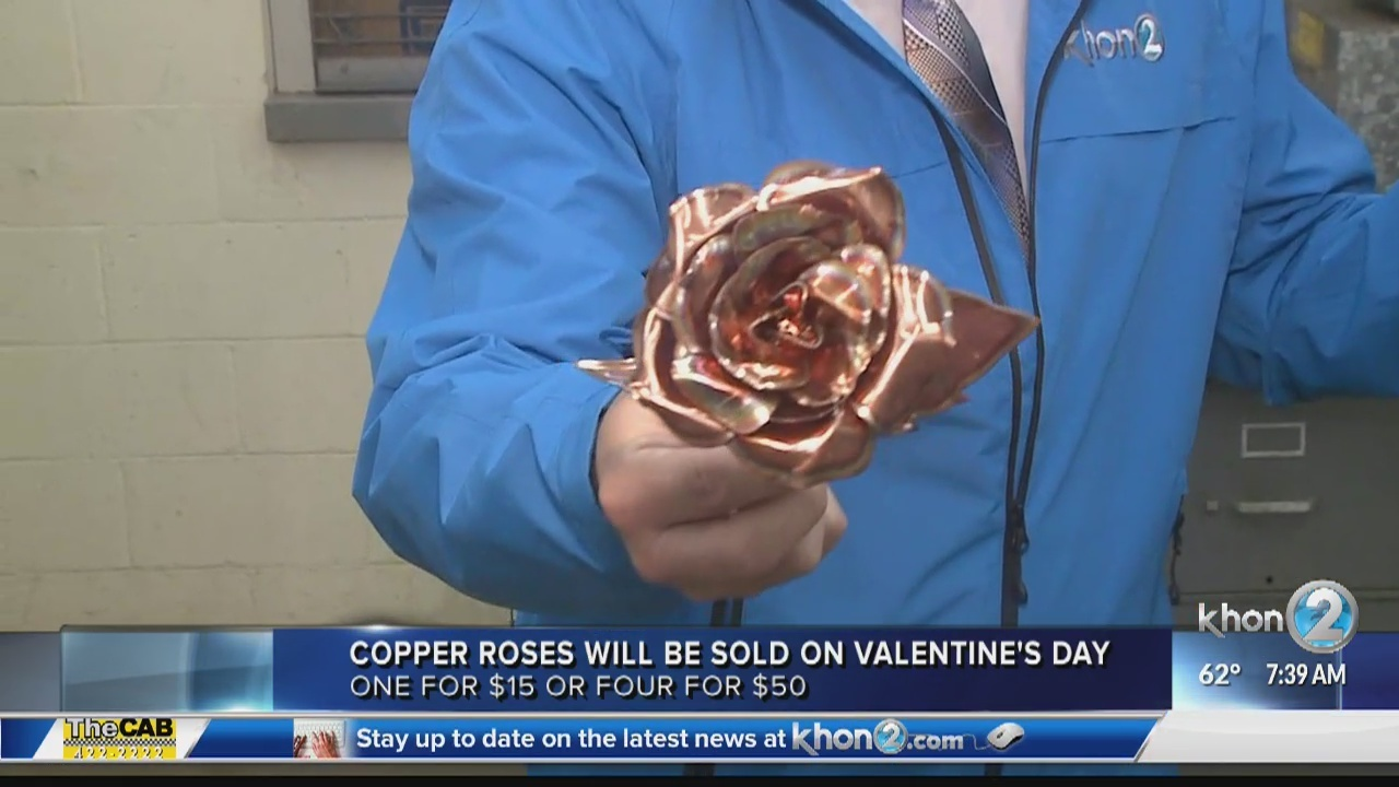 'Copper Roses' for Valentine's Day