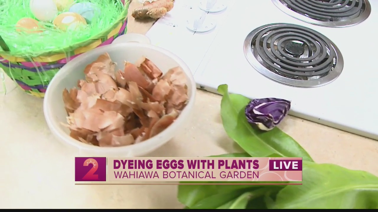 Take 2:Dying Easter eggs with herbs and vegetables