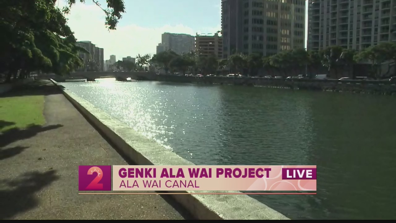 Take 2:The Genki Ala Wai Project