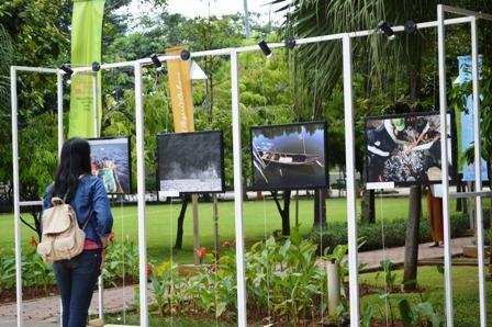 Selamatkan Mangrove Indonesia, Kembalikan Kejayaan Negeri