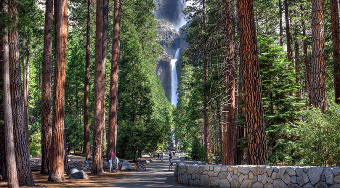 Tragedy in Yosemite