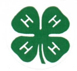 4-H Auction in Bishop Sees $114,000 Increase From Last Year