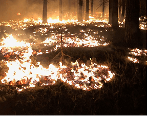 Springs Fire Grows Sixty-Nine Acres