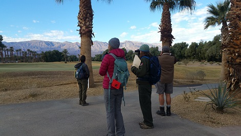 Death Valley Prepares for Annual Bird Count