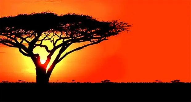 30 Kickass and Interesting Facts About Africa – Part 1 ...