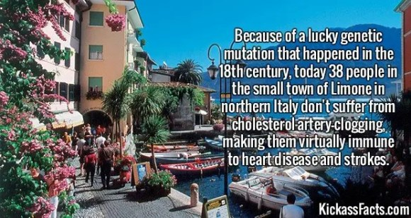 2610 Limone-Because of a lucky genetic mutation that happened in the 18th century, today 38 people in the small town of Limone in northern Italy don't suffer from cholesterol artery-clogging, making them virtually immune to heart disease and strokes.