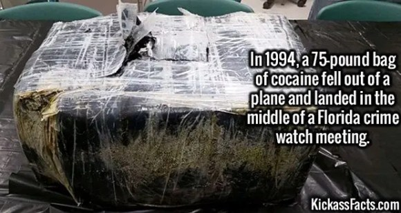 2665 Bag of cocaine-In 1994, a 75-pound bag of cocaine fell out of a plane and landed in the middle of a Florida crime watch meeting.