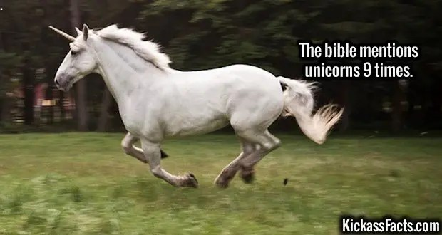Unicorns In The Bible: KickassFacts.com - Page 12