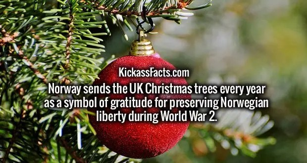 Norway sends the UK Christmas trees every year as a symbol of gratitude for preserving Norwegian liberty during World War 2.