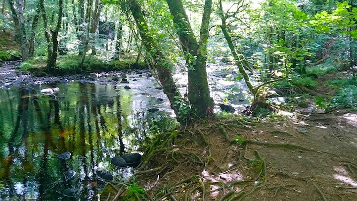 restful riversides