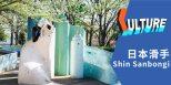 #中文字幕# 刚柔并济的日本滑板游侠 Shin Sanbongi