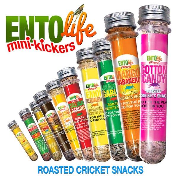 Kickers Crickets