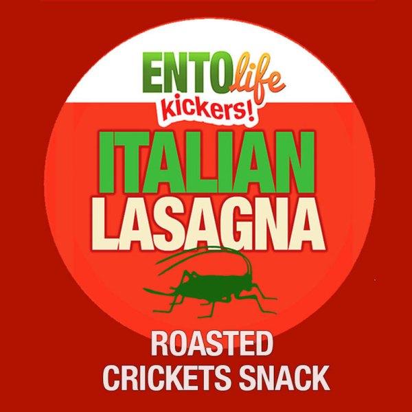 Edible Crickets Lasagna