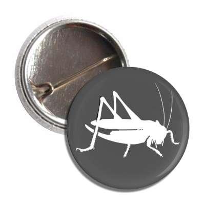 Eat Edible Crickets