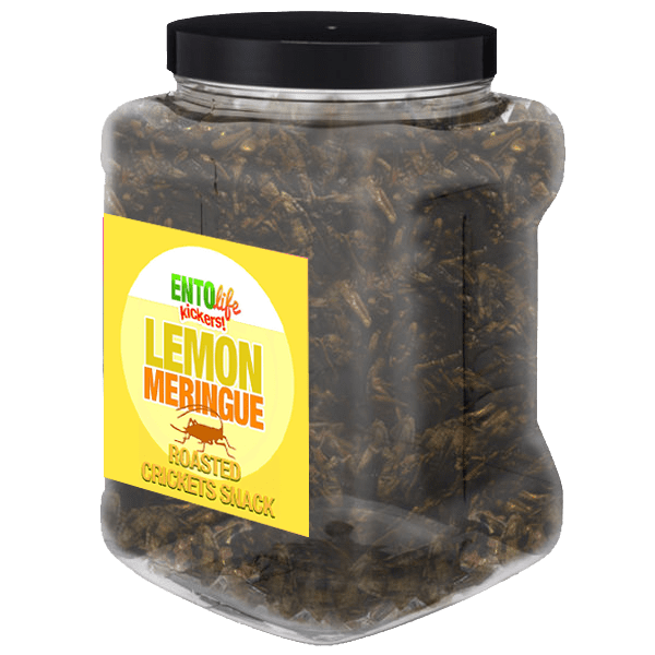 Pound Crickets You Can Eat -Lemon Meringue Flavor