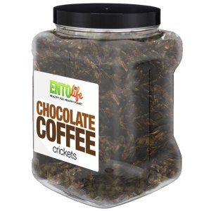 Jar 1lb Crickets Chocolate Coffee Flavor