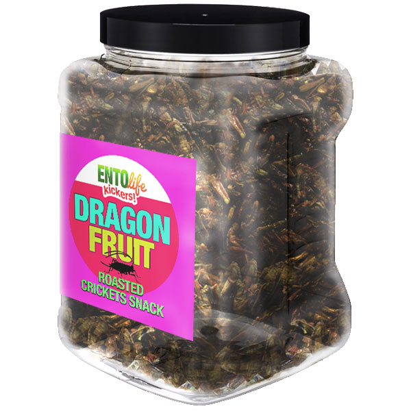 Pound Edible Crickets Dragon Fruit Flavor