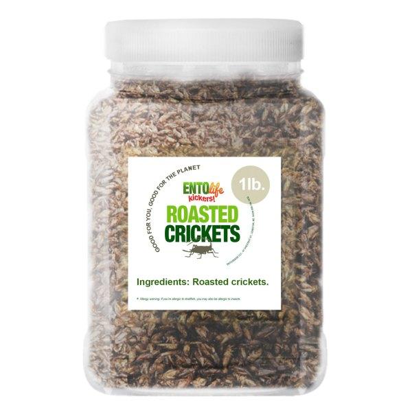 Pound Edible Crickets Plain Flavor