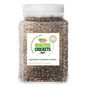 Pound Edible Crickets Plain Flavor