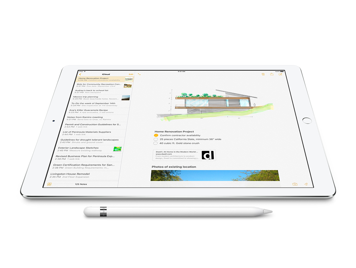 Apple Ipad Pen