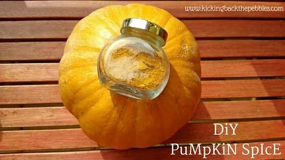DiY PuMpKiN SpIcE | by Kicking Back the Pebbles (original recipe on TheKitchn)