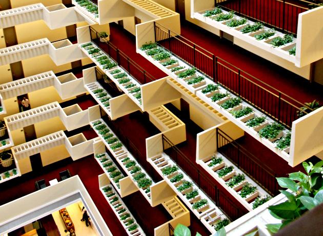 Hyat Hotel Atlanta inner balconies