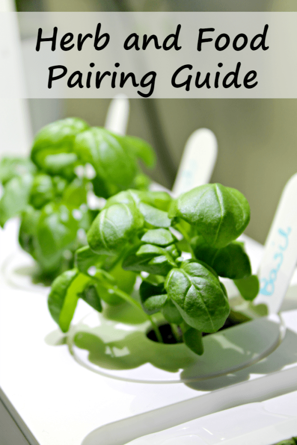 Do you love cooking with fresh herbs but are unsure of how to use them in cooking? Try this A Simple Guide For Which Herbs Go Best With What Foods