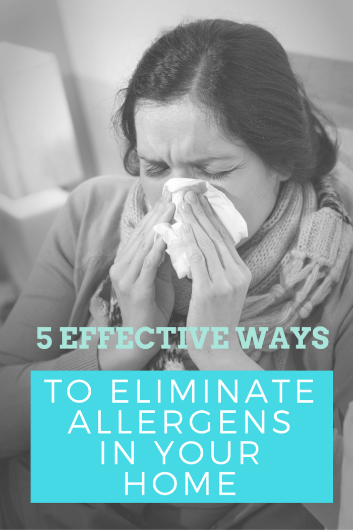 Do you or your family suffer from allergies? Lower your risk with these 5 Effective Ways To Eliminate Allergens In Your Home