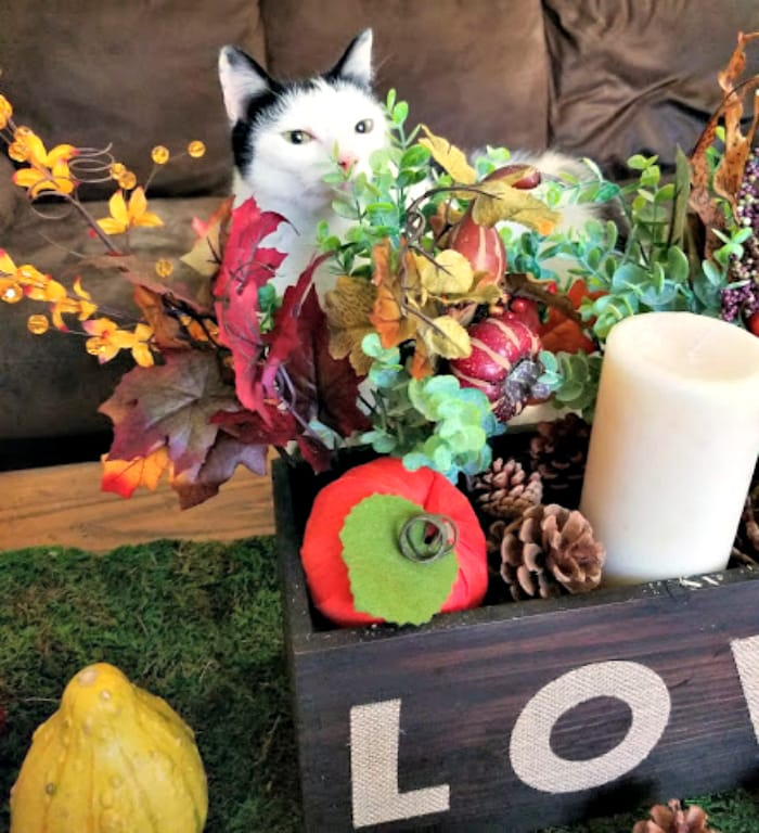 Easy Rustic Fall Or Thanksgiving Table Centerpiece meepy