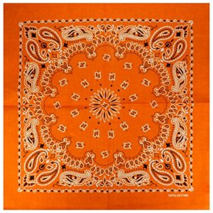 Lot 12 Bandana avec Motif Paisley exclusif orange