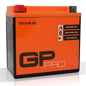 GP-PRO GTX14-BS 12V 14Ah GEL Batterie de démarrage (semblable à YTX14-BS / 51214) (Sans entretien / Scellé) Moto Accumulateur