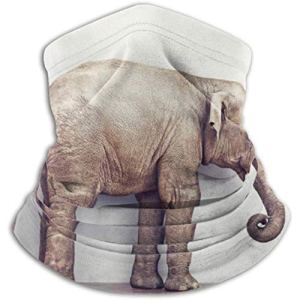 Xian Shiy Elephant Calm Room Near White Wall Scarf, a Full Face Mask or Hat, Neck Gaiter, Neck Cap Mask, Half Mask, fac