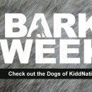 bark-week-header-fridays-dogs-of-kiddnation-130x130