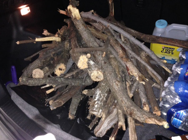 shanon's-wood